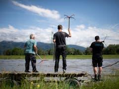 Rheinholzer warten am Mittwoch, 12. Juni, in Kriessern SG auf Schwemmholz, um es mit Wurfhaken zu fangen. (Bild: KEYSTONE/GIAN EHRENZELLER)