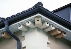 Wenn Häuser energetisch abgedichtet werden, gehen häufig Niststandorte von Seglern (und anderen Vögeln) verloren. Da die Nester von Mauer- und Alpenseglern geschützt sind, muss in solchen Fällen Ersatz geschaffen werden, was weder technisch anspruchsvoll noch teuer ist. (Bild: Schweizer Vogelschutz/KEY - 19. April 2005)