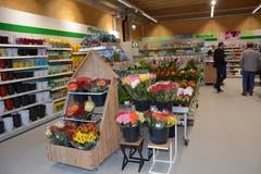 Die grosszügig angelegte Blumenabteilung. (Bild: Beat Lanzendorfer)