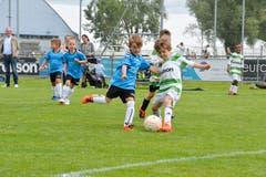 FCK Family Day in Kreuzlingen: Hier spielen die Bambini des FC Kreuzlingen gegen die der AS Calcio (blau). (Bild: Donato Caspari)