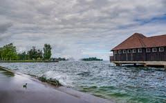 Der Bodensee ist gut gefüllt, das Wasser tritt bereits über das Ufer in Rorschach. (Bild: Luciano Pau)