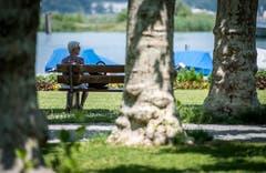 Kreuzlingen TG - Hitze im Thurgau: Impressionen aus dem Seeburgpark in Kreuzlingen.