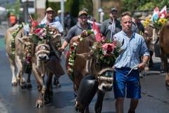 Impressionen vom Festumzug - Bauer Matthias Studhalter aus Horw mit seinen Kühen. (Bild: Boris Bürgisser)