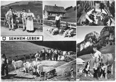Appenzeller Sennenleben. (Bild: Foto Gross, St.Gallen/Landesarchiv AI)