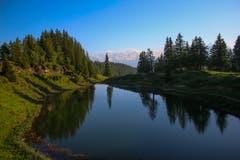 Das wundervolle Wandergebiet auf den Eggbergen ist eindrücklich mit seiner Waldlandschaft und den naturnahen Wanderwegen. Der Fleschsee ist ein beliebtes Wanderziel. (Bild: Sämi Stadler, Eggbergen, 2. Juli 2019)