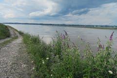 Rheinmündung - Nahtloser Übergang in den See. (Bild: Fredy Zünd)
