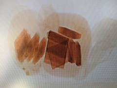 Die Röntgenaufnahme brachte es zum Vorschein: In Kopf und Bauch des Teddybären waren mehrere Blöcke Marihuana eingenäht. (Bild: Eidgenössische Zollverwaltung)