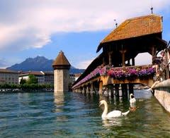 Nicht nur für Touristen ist diese Kulisse ein Traum. (Bild: Walter Buholzer, Luzern, 16. Juli 2019)