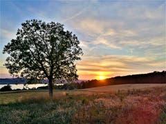 Wunderschöner Sonnenuntergang mit dem Sempachersee im Hintergrund. (Bild: Urs Gutfleisch, Sempach, 16. Juli 2019)