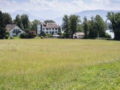 Dieses rund 18'000 Quadratmeter grosse Grundstück in Rapperswil-Jona direkt am Zürichsee hat Tennisspieler Roger Federer gekauft . Wann mit dem Bau der Villa mit Tennisplatz begonnen wird, ist noch unklar. (Bild: KEYSTONE/ENNIO LEANZA)
