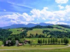 Herrliches Sommerwetter: Einzelne Wolken über der Pilatuskette stören da nicht. (Bild: Urs Gutfleisch, Rengg LU, 20. Juli 2019)