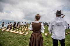 Auf der Rigi Staffelhöhe fanden sich am Sonntag 26 Alphornbläser zu einem improvisierten Konzert ein. (Bild: Nadia Schärli, Rigi Staffelhöhe, 21. Juli 2019)