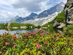 Etwas versteckt, aber wunderschön: der kleine Bergsee «Düsselisee». (Bild: Martina Tresch, Maderanertal, 20. Juli 2019)