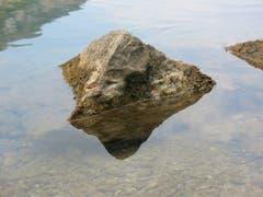 Auch die Ostschweiz hat ein Matterhorn. Perfektes Spiegelbild, fotografiert am Seealpsee. (Bild: Hansjürg Oesch)