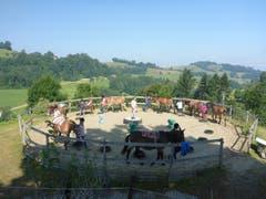Die Maultiere im Reitferiencamp werden durch den «Round-Pen» geführt, bevor die Kinder auf die Tiere aufsteigen. Lagerbild: Reitferiencamp mit Maultieren (Wilisau, 21. Juli 2019)