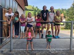 Die kleinen Reiter des Reitlagers Hanny-Fee. (Lagerbild: Reitlager Hanny-Fee, Lifelen, 22. Juli 2019)