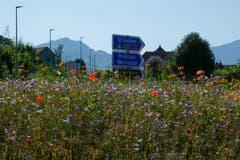 Ein wahres und wunderschönes Farbfeuerwerk auf dem Kreisel beim Spital Appenzell. (Bild: Franz Häusler)