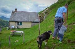 Vater und Sohn mit Hund Bärli unterwegs zu den Kühen.