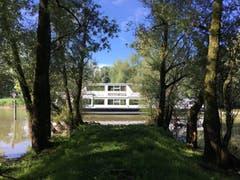 Die Rhynegg am alten Rhein. (Bild: Toni Sieber)