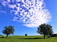 Wunderbare Schäfchenwolken am Himmel. (Bild: Urs Gutfleisch, Buttisholz, 11. August 2019)
