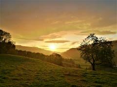 Wunderschöne Abendstimmung: Es regnet und am Horizont scheint die Sonne. (Bild: Urs Gutfleisch, Malters, 12. August 2019)