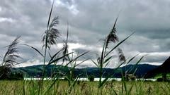 Dunkle Wolken über dem Ägerisee. (Bild: Peter Bumbacher, Unterägeri, 13. August 2019)