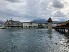 Die Kapellbrücke in Luzern. (Bild: Sabine Ittig, Luzern, 13. August 2019)
