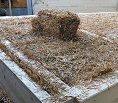 Für die Wandelemente werden in die Rahmen aus Brettschichtholz Kleinballen aus Stroh gepresst. (Bild: PD)