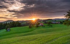 Morgenstimmung bei den Bauern im Hintehof Herisau. (Bild: Luciano Pau)