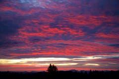 Sonnenaufgang um 6 Uhr auf der Hohen Buche. (Bild: Hans Aeschlimann)