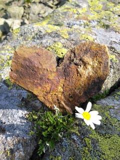 Bei der Wanderung auf die Intschialp wurde dieser schöne Stein in Form eines Herzes entdeckt. (Bild: Priska Briker-Herger)