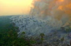 Der Amazonas brennt. (Bild: Keystone/Twitter/Ibama)