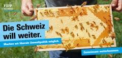 Auch das Klima und die Umwelt gehört seit der Umfrage der Partei bei ihren Mitgliedern zu den Kerngebieten des Wahlkampfs 2019. (Bild: FDP)