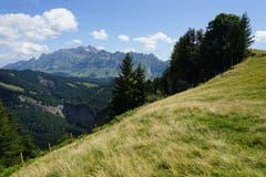 Auf dem Hinderfallenchopf auf 1531 Meter über Meer bietet sich ein grandioser Rundumblick.