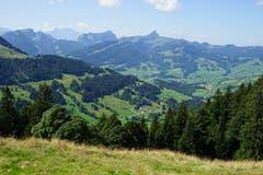 Der Anstieg ist ruppig, doch schon auf halber Höhe öffnet sich der Blick ins Toggenburg.