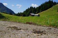 Vorbei an der Alp Ellbogen erklimmt man nun den Hinderfallenchopf, den höchsten Punkt der Wanderung.