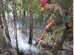 Die Feuerwehr ist auch im Einsatz in der Region Krasnojarsk. Am Samstag zählten die Behörden insgesamt noch 174 Waldbrände auf einer Fläche von etwa 125'000 Hektar. (Bild: Keystone/AP Press Press Service of the Ministry of Forestry of t)