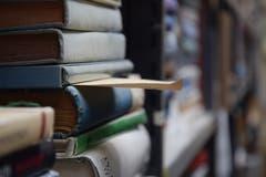 Unterschiedlichste Bücher treffen in den Regalen aufeinander. (Bilder: Tobias Söldi)