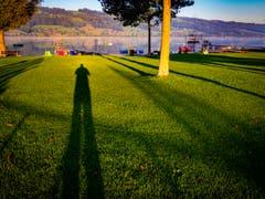 Überaus lange Schatten vor herbstlich-farbigem Baldeggersee. (Bild: Stefan Kunz, 12. September 2019)