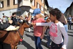Die Tiere lassen sich gerne von den Kindern streicheln. (Bild: Urs Hanhart, 14. September 2019)