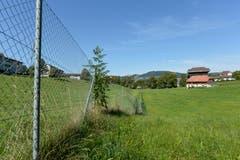 Seit 2004 ist das Burgweier-Areal aus Sicherheitsgründen eingezäunt. Diese Zäune will die Stadt schnellstmöglich abräumen.