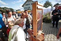 Am Stand vom Bienenzüchterverein Oberfrauamt Aargau können Bienen beobachtet werden.