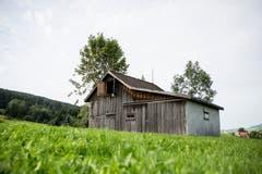 Elf solcher Holzhütten, die der Bewirtschaftung des einstigen Hochmoors bei Gais dienten und teilweise noch dienen, werden beim zweiten Audio-Festival in Klanginstallationen verwandelt. (Bild: Mareycke Frehner - 30. August 2017)