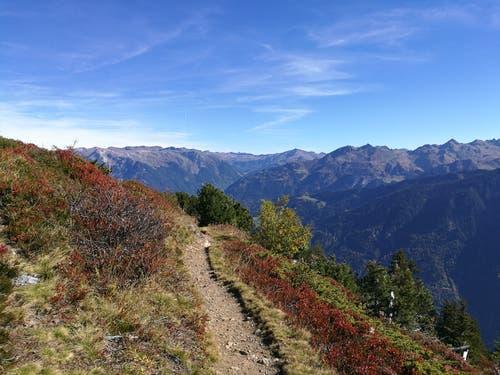 Auf der Panoramawanderung zum Chnügrat (1880 m) geniesst man die herrliche Aussicht auf die Berge und die schönen Farben des Herbstes. (Bild: Urs Gutfleisch)