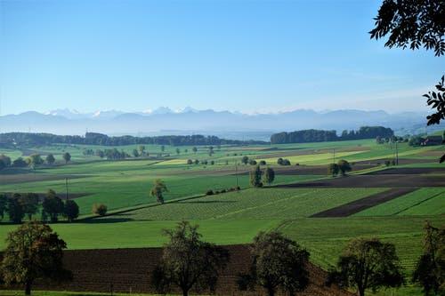 Frisch gepflügte Äcker mit dunkler Erde, auf dem Gunzwiler Moos. (Bild: Josef Habermacher (Gunzwil, 13. Oktober 2018))