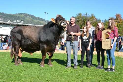 Kantonale Viehschau Nidwalden 2018 in Oberdorf: Mister Nidwalden 2018 ist der Stier Marc von Besitzer Sepp Kiser aus Ennetmoos. (Bild: Matthias Stadler, 13. Oktober 2018)