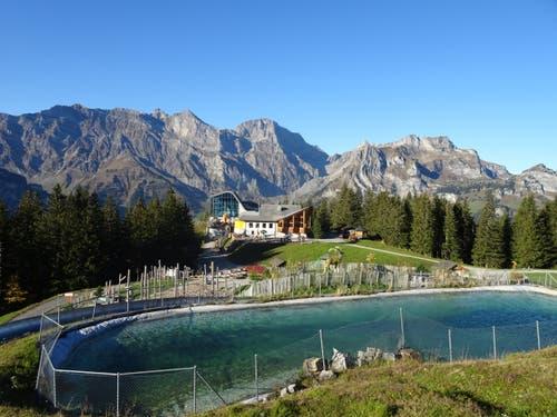 Bergrestaurant Ristis mit Graustockmassiv im Hintergrund. (Bild: Walter von Holzen)