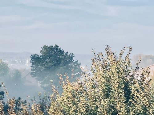 Herbstnebel über dem Tägermoos. (Bild: Voker Heske)