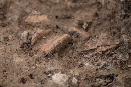 Die Egolzwiler Erde hat noch nicht alle Ihre Schätze preisgegeben: ein Tonstück im Boden. (Bild: Pius Amrein (Egolzwil, 17. Oktober))
