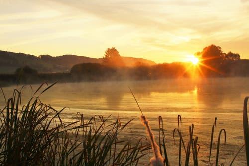 Morgens im Moos. (Bild: Irene Wanner (Uffikon-Buchs, 16. Oktober 2018))